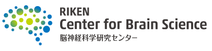 Image that reads Riken Center for Brain Science