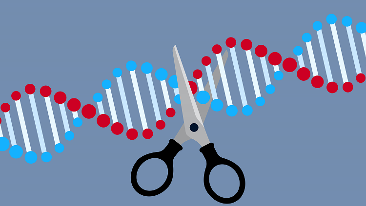 dna with scissors
