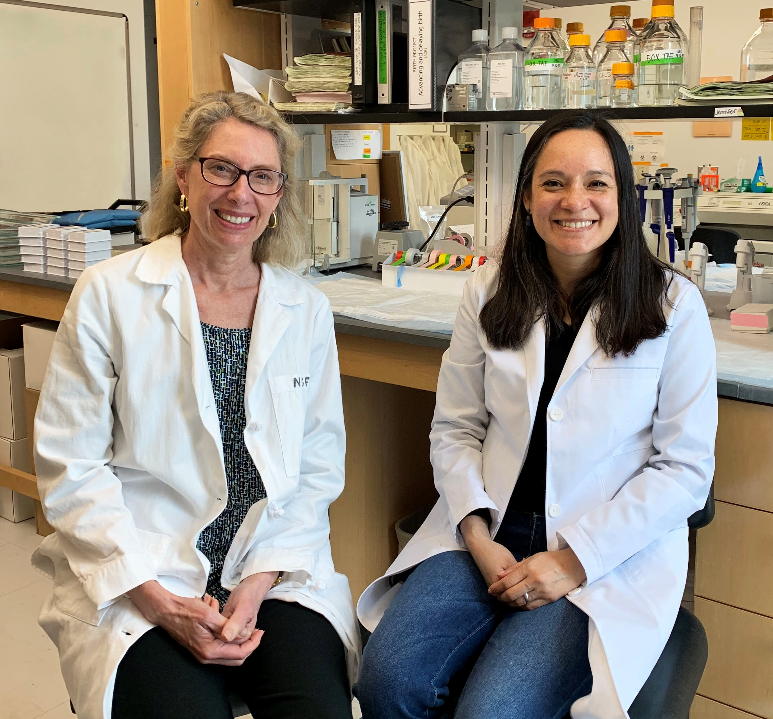 Drs. Alexandra Castillo-Ruiz and Nancy Forger sitting in their lab.