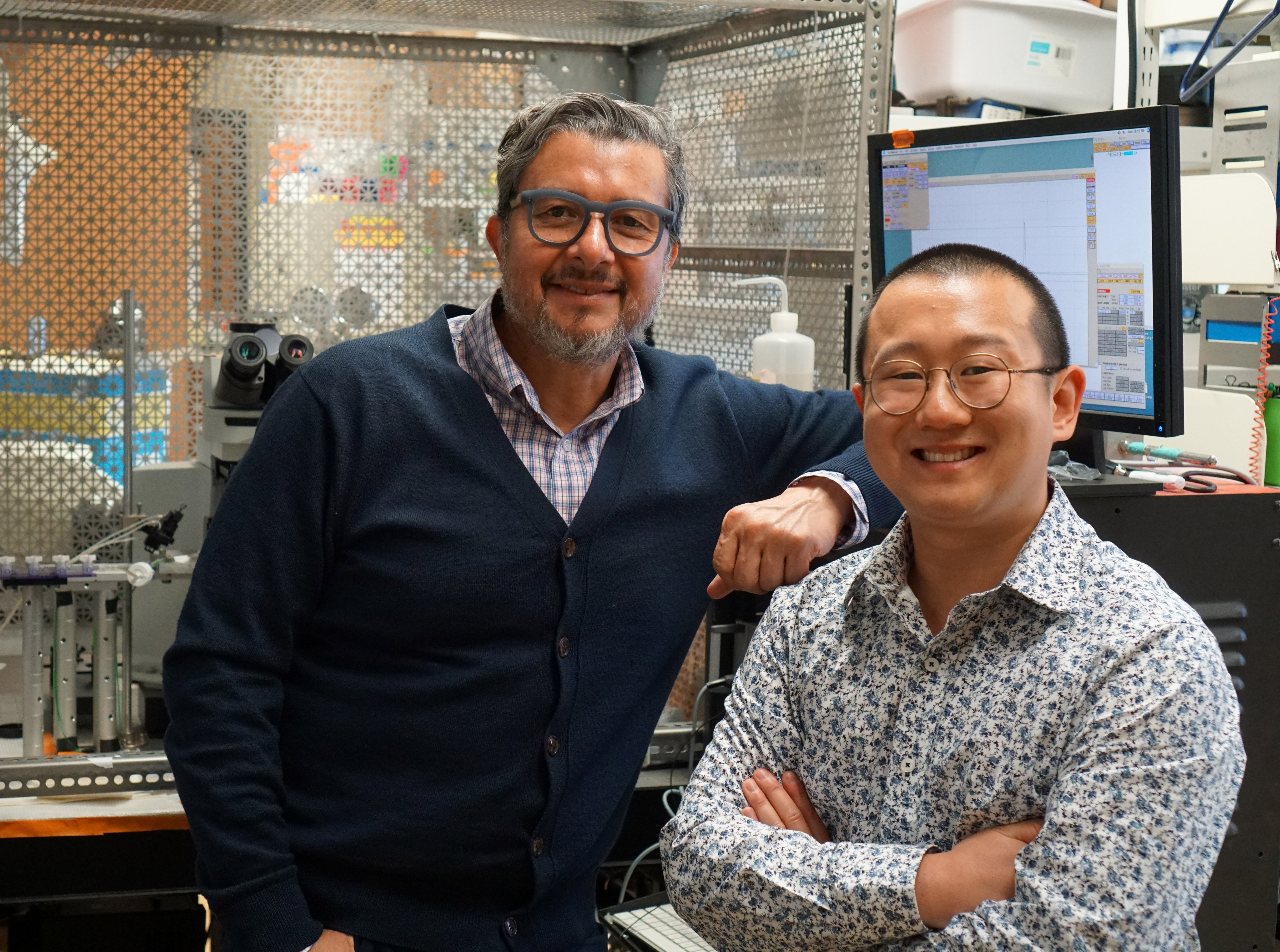 Associate Professor, Ricardo Araneda, PhD, Department of Biology, University of Maryland, College Park, MD, and PhD Candidate, Ruilong Hu, Neuroscience & Cognitive Sciences Program, University of Maryland, College Park, MD.