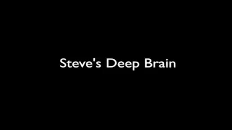 Steve's Deep Brain